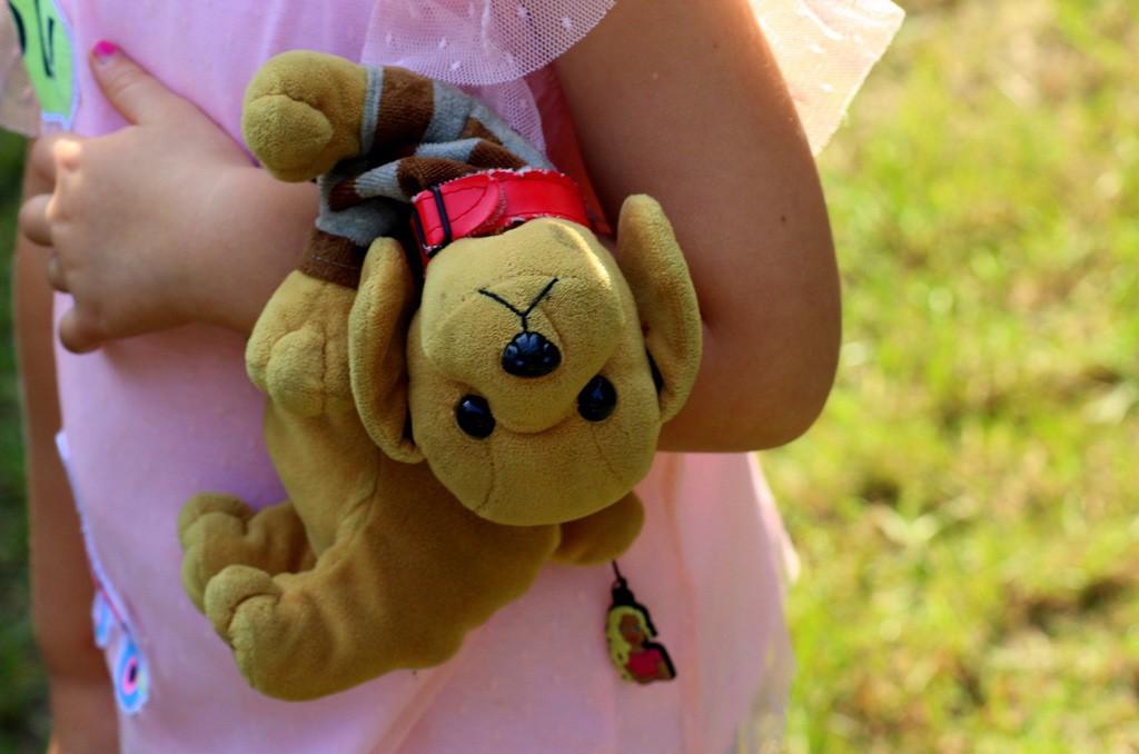 photo d'une peluche tenue par une petite fille